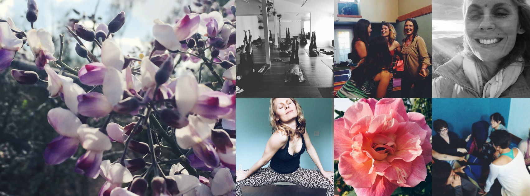 sunrose yoga: wild & serene// radiant YOU
